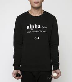 Alpha Dictionary Sweatshirt