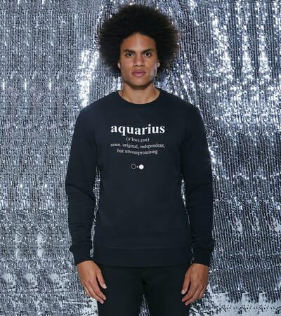 Aquarius Dictionary Sweatshirt (mens)