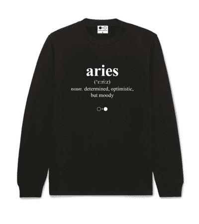 Aries Dictionary Sweatshirt (mens)