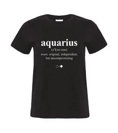 Aquarius Dictionary T-shirt (womens)